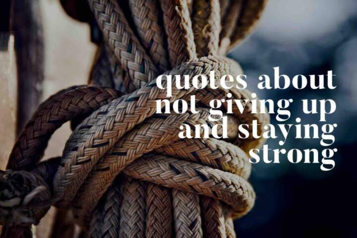 Quotes About Not Giving Up & Staying Strong