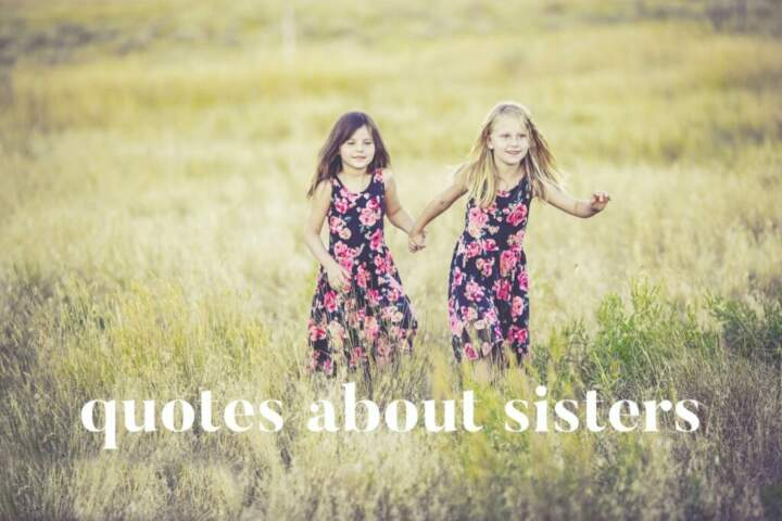 Sister Quotes And Sayings Quotes About Sisters Quotes On Sisters
