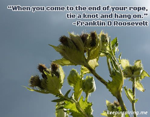 franklin_d_roosevelt_encouragement_quote