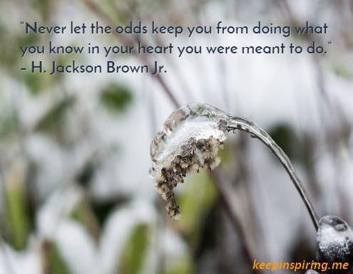 h._jackson_brown_jr._encouragement_quote