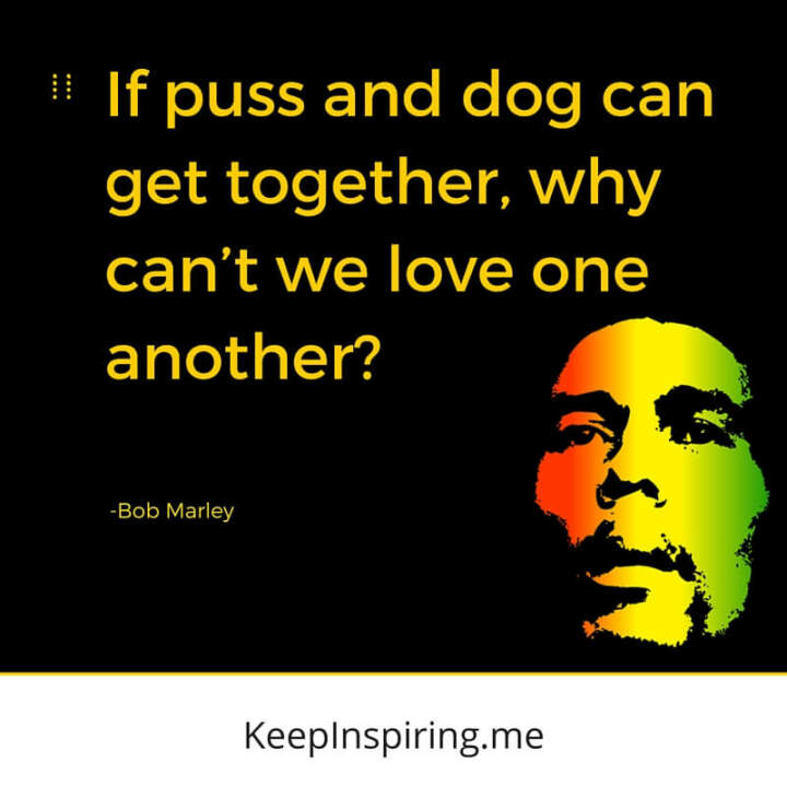 Puss and dog. —Bob Marley
