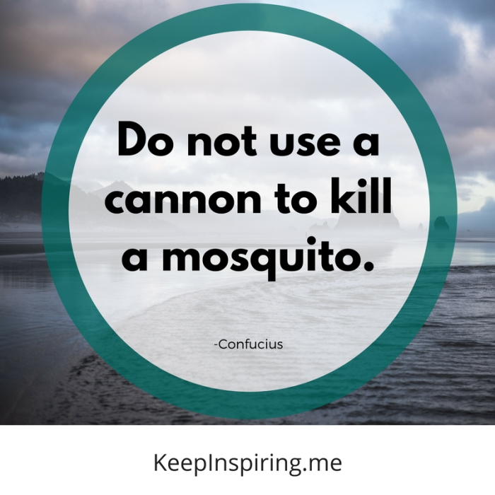 """Do not use a cannon to kill a mosquito."" -Confucius"
