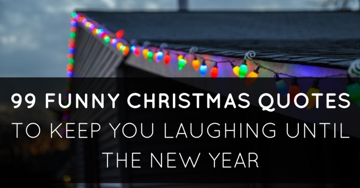 99 Funny Christmas Quotes To Make You Laugh Until New Year