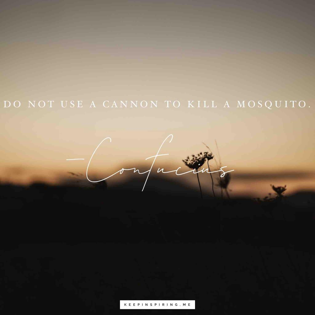 """Confucius advice """"Do not use a cannon to kill a mosquito"""""""