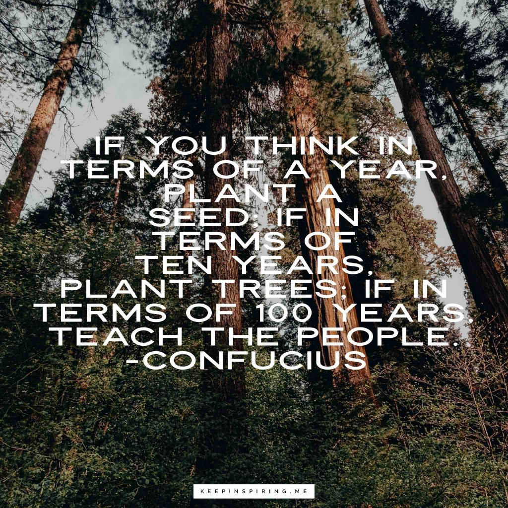 """Confucius quote """"If you think in terms of a year, plant a seed; if in terms of ten years, plant trees; if in terms of 100 years, teach the people"""""""