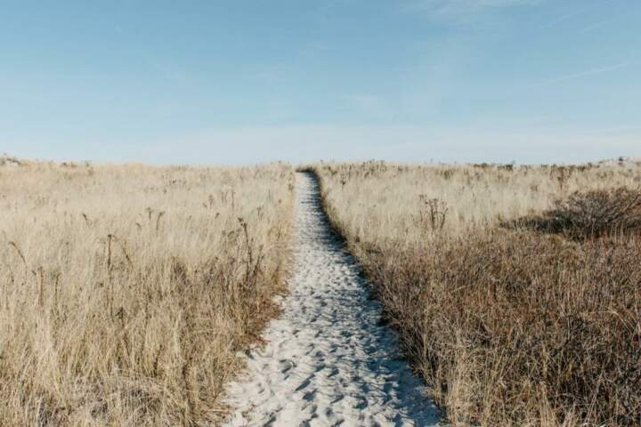 a sand path between grass with blue sky