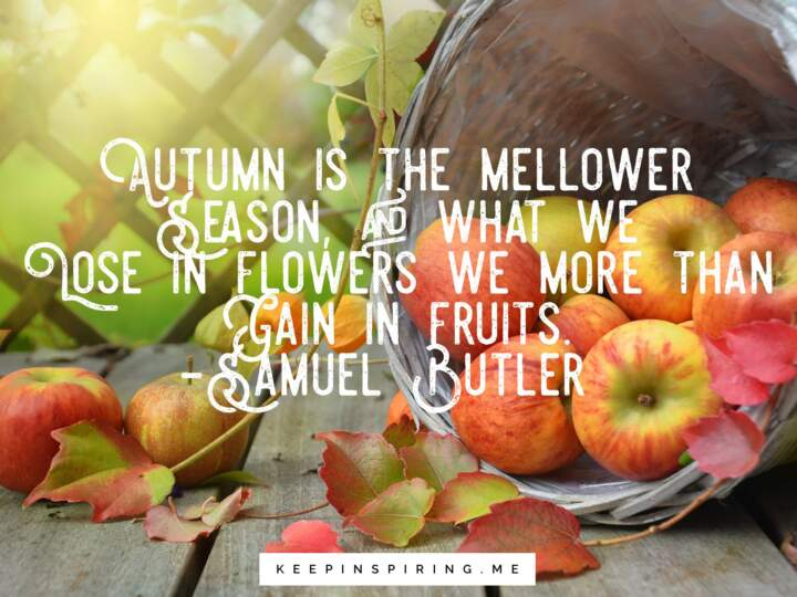 quotes about fall