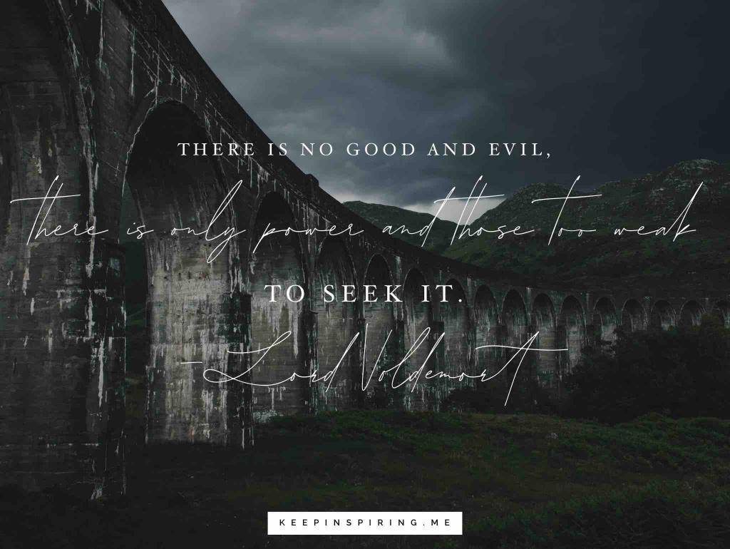 "Lord Voldemort quote ""There is no good and evil, there is only power and those too weak to seek it"""