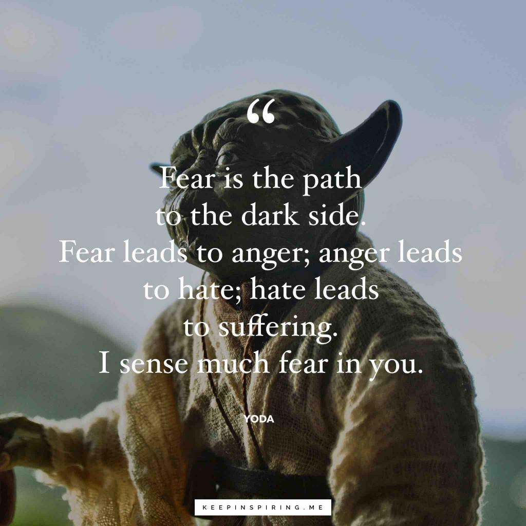 "Yoda quote ""Fear is the path to the dark side. Fear leads to anger; anger leads to hate; hate leads to suffering. I sense much fear in you"""