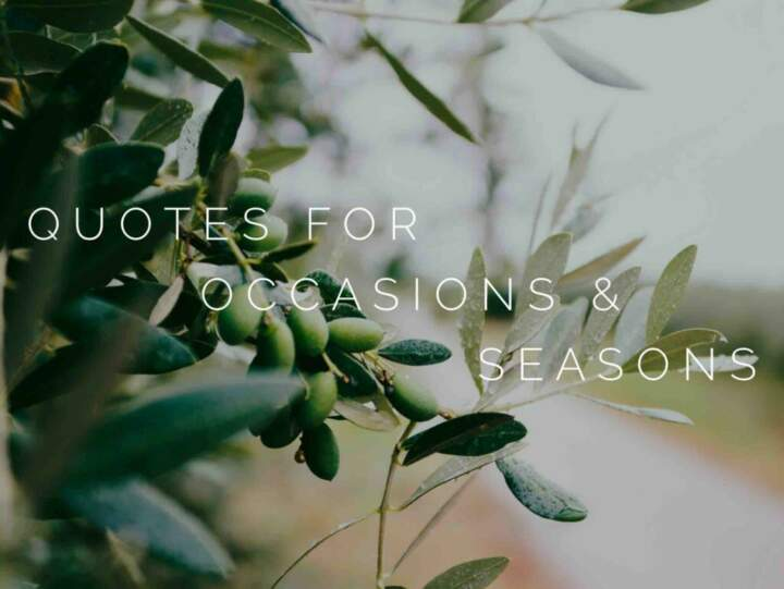 Quotes for Occasions and Seasons