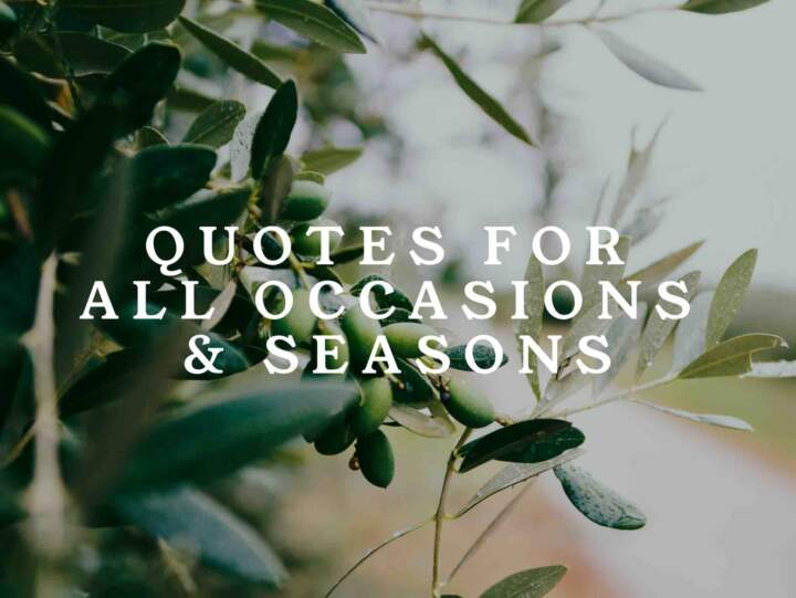 Quotes For Occasions Seasons Keep Inspiring Me