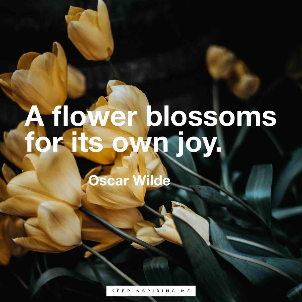 "Oscar Wilde quote ""A flower blossoms for its own joy"""