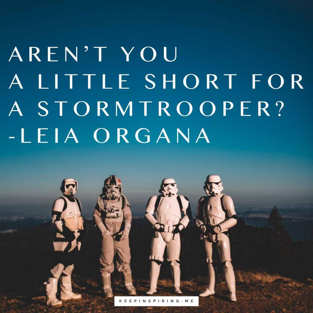"Funny Star Wars quote ""Aren't you a little short for a Stormtrooper?"""