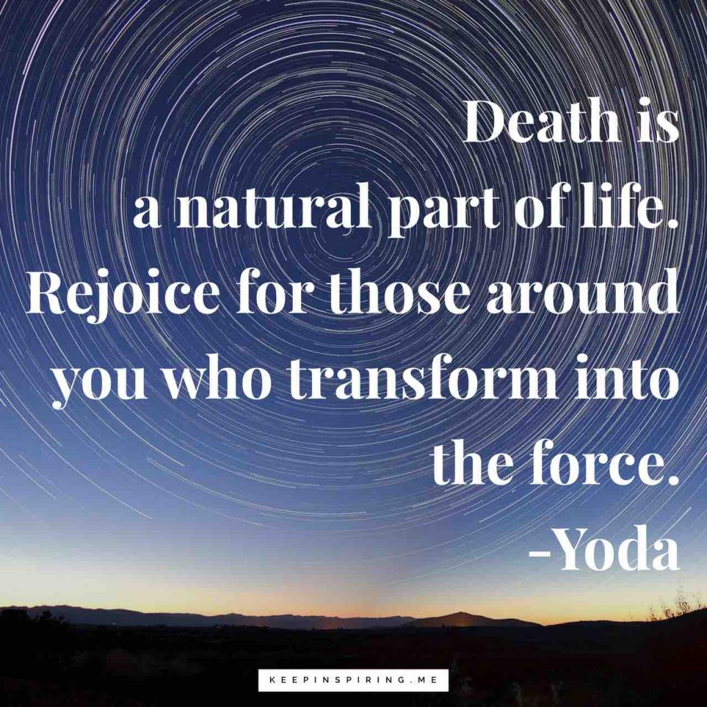 "Yoda quote ""Death is a natural part of life. Rejoice for those around you who transform into the Force"""