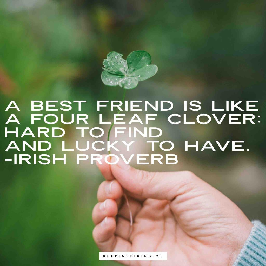 "Irish Proverb ""A best friend is like a fourleaf clover: hard to find and lucky to have"""