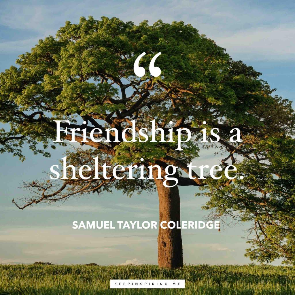 "Samuel Taylor Coleridge quote ""Friendship is a sheltering tree"""
