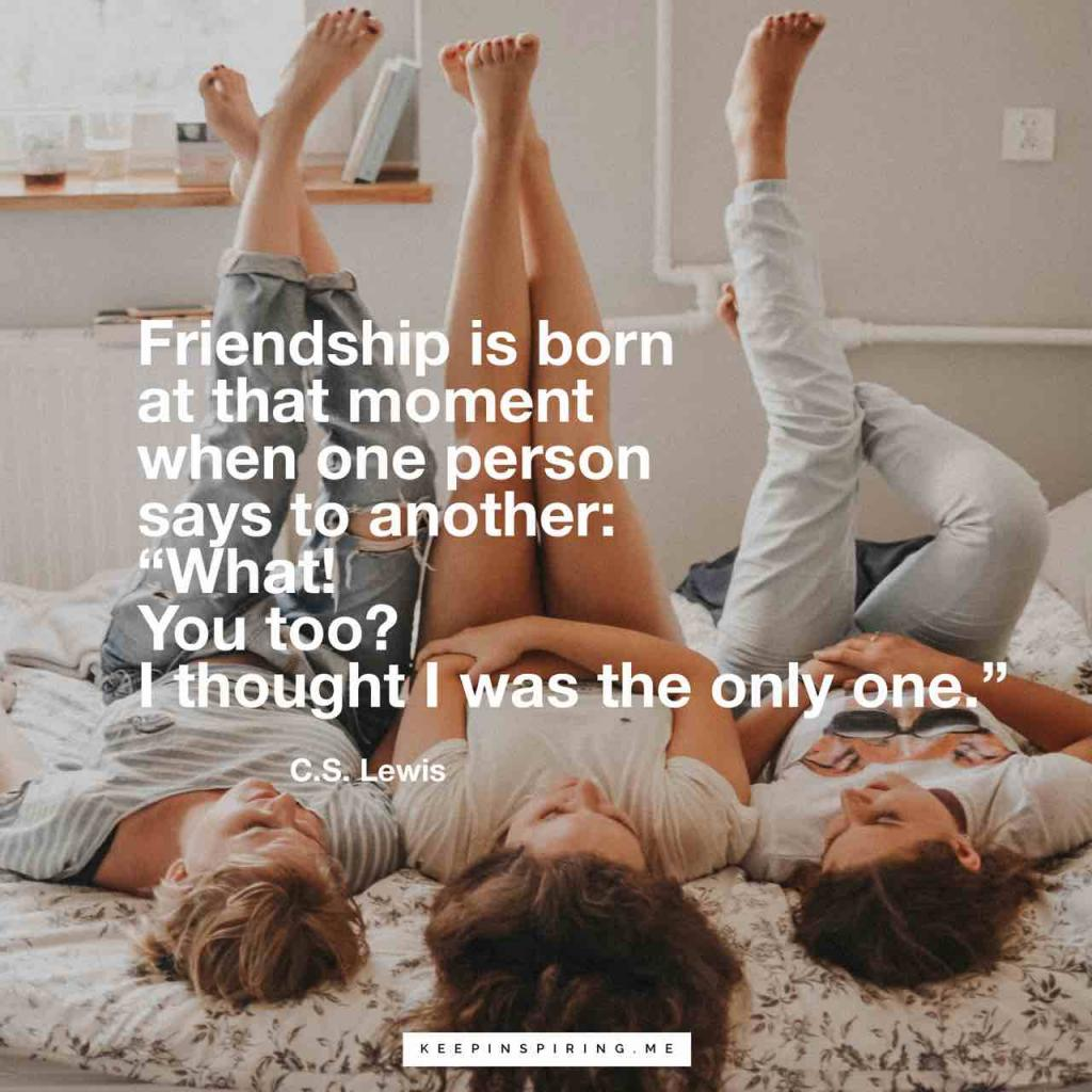"""Friendship is born at that moment when one person says to another: ""What! You too? I thought I was the only one"""