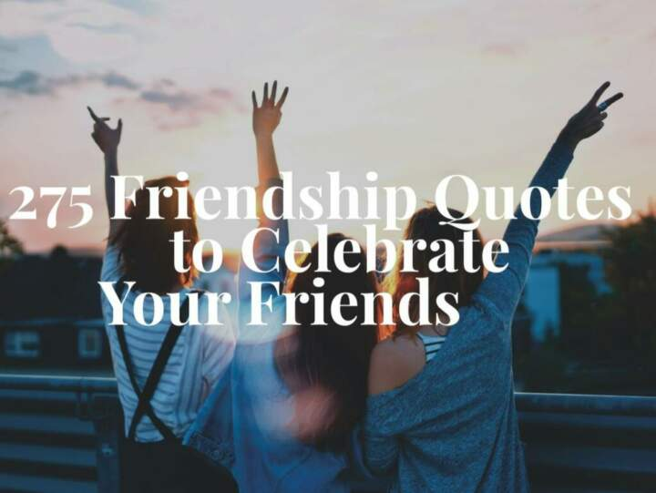 275 Friendship Quotes to Celebrate Your Friends