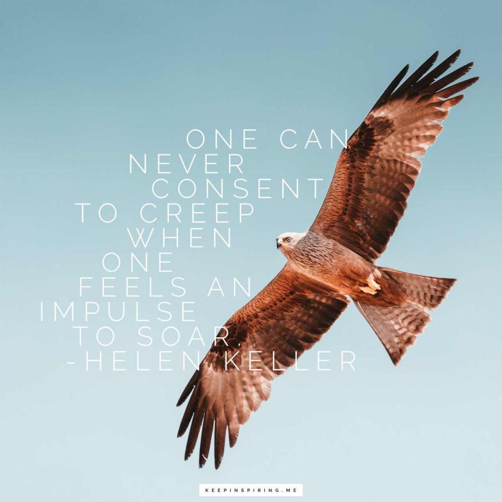 "Helen Keller quote ""One can never consent to creep when one feels an impulse to soar"""