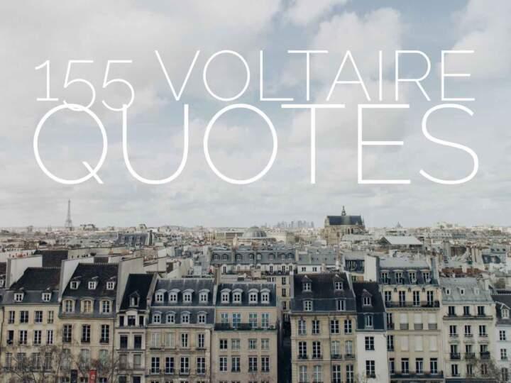 155 Voltaire Quotes