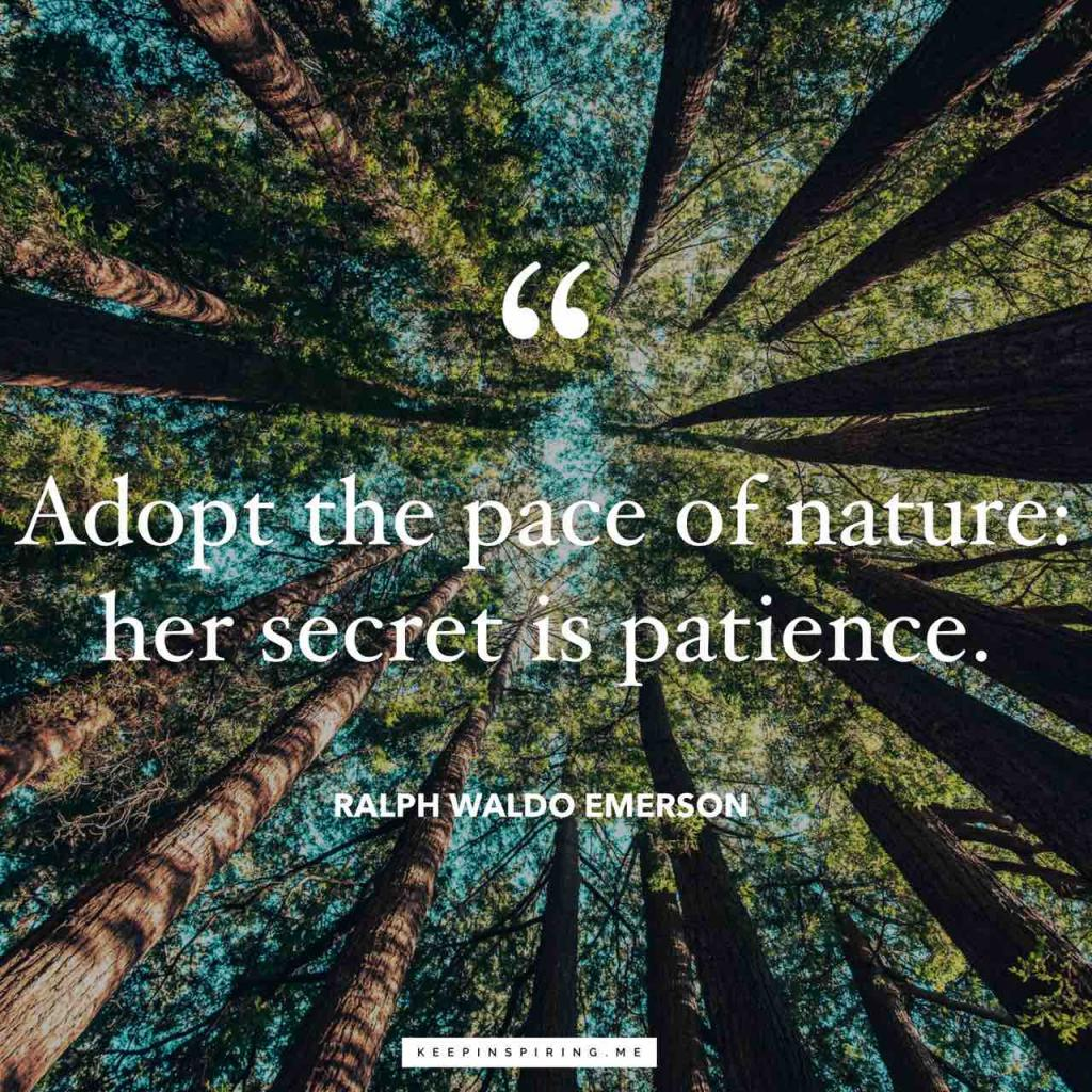 """Adopt the pace of nature: her secret is patience"""