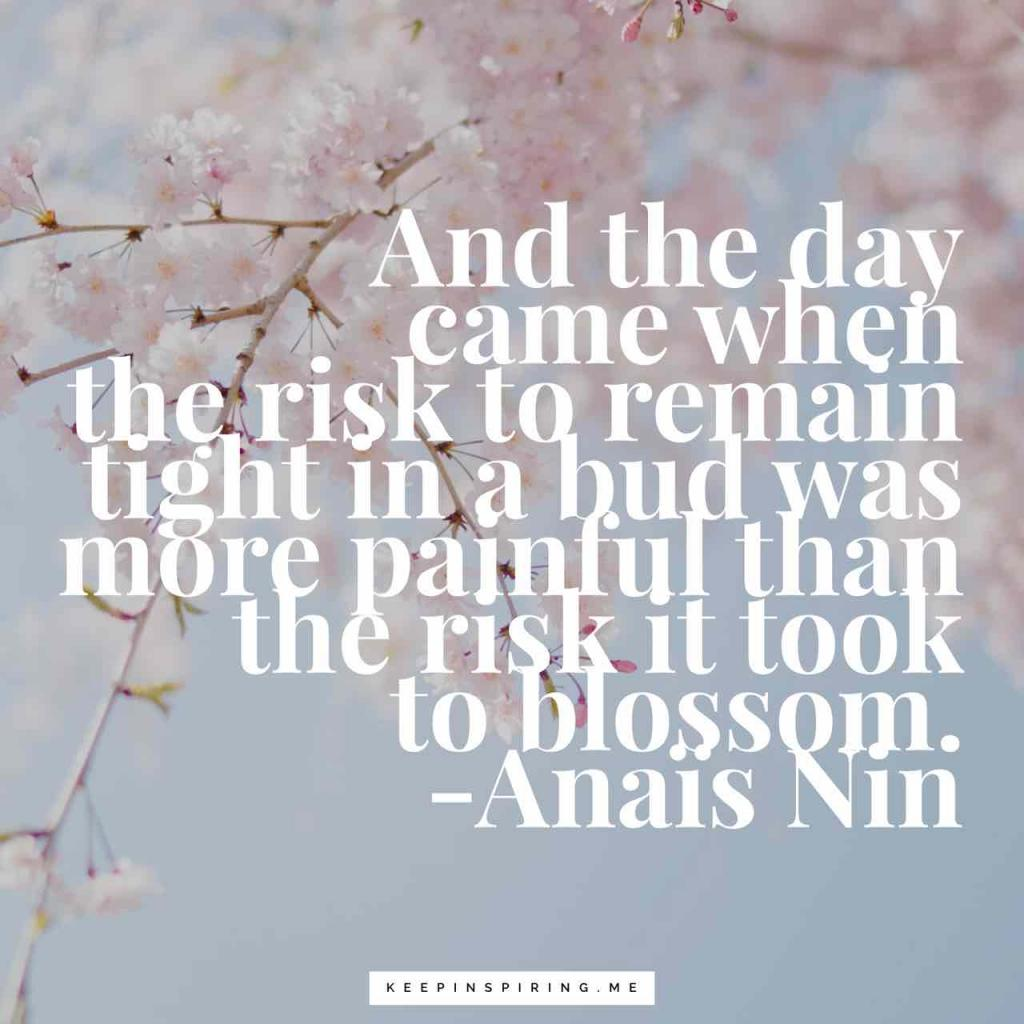 """""""And the day came when the risk to remain tight in a bud was more painful than the risk it took to blossom"""""""