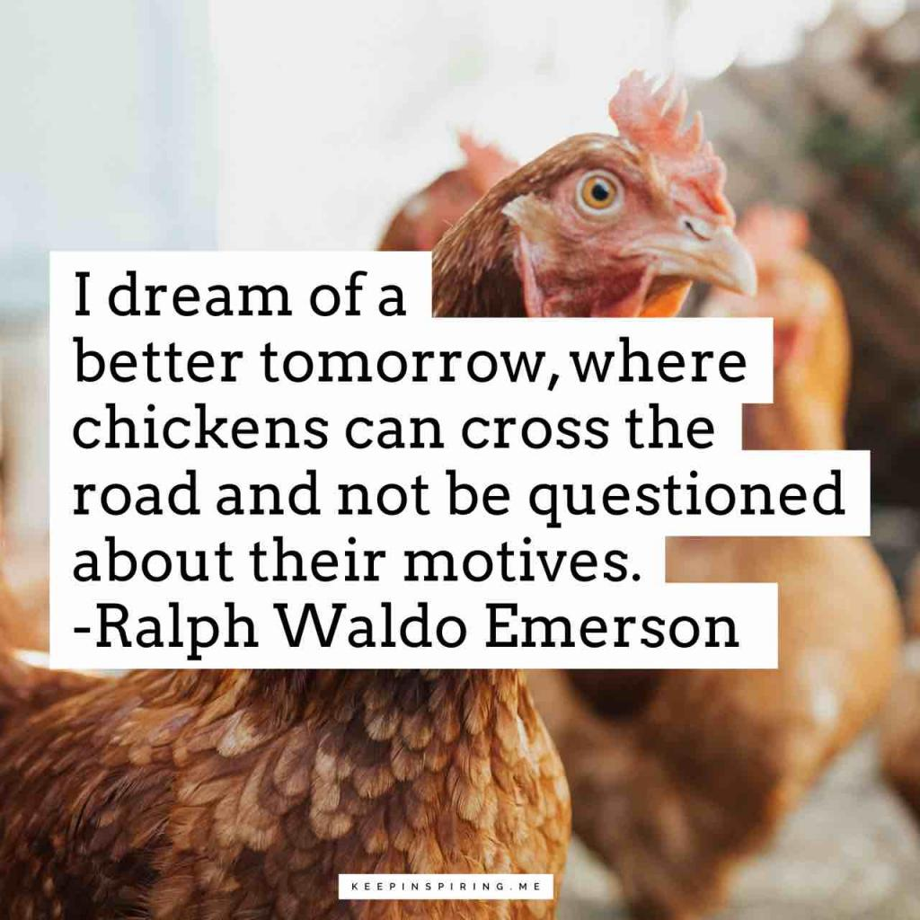 """I dream of a better tomorrow, where chickens can cross the road and not be questioned about their motives"""
