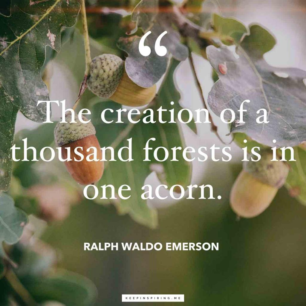 "Emerson quote ""The creation of a thousand forests is in one acorn"""