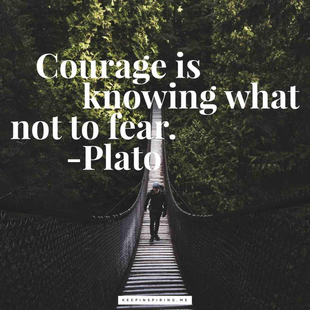 "Plato courage quote ""Courage is knowing what not to fear"""