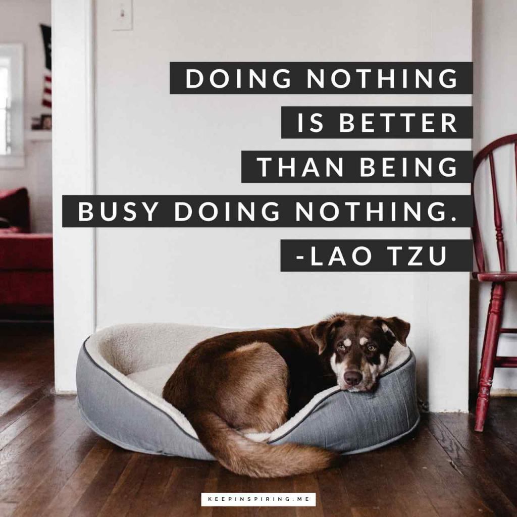 "Lao Tzu quote ""Doing nothing is better than being busy doing nothing"""