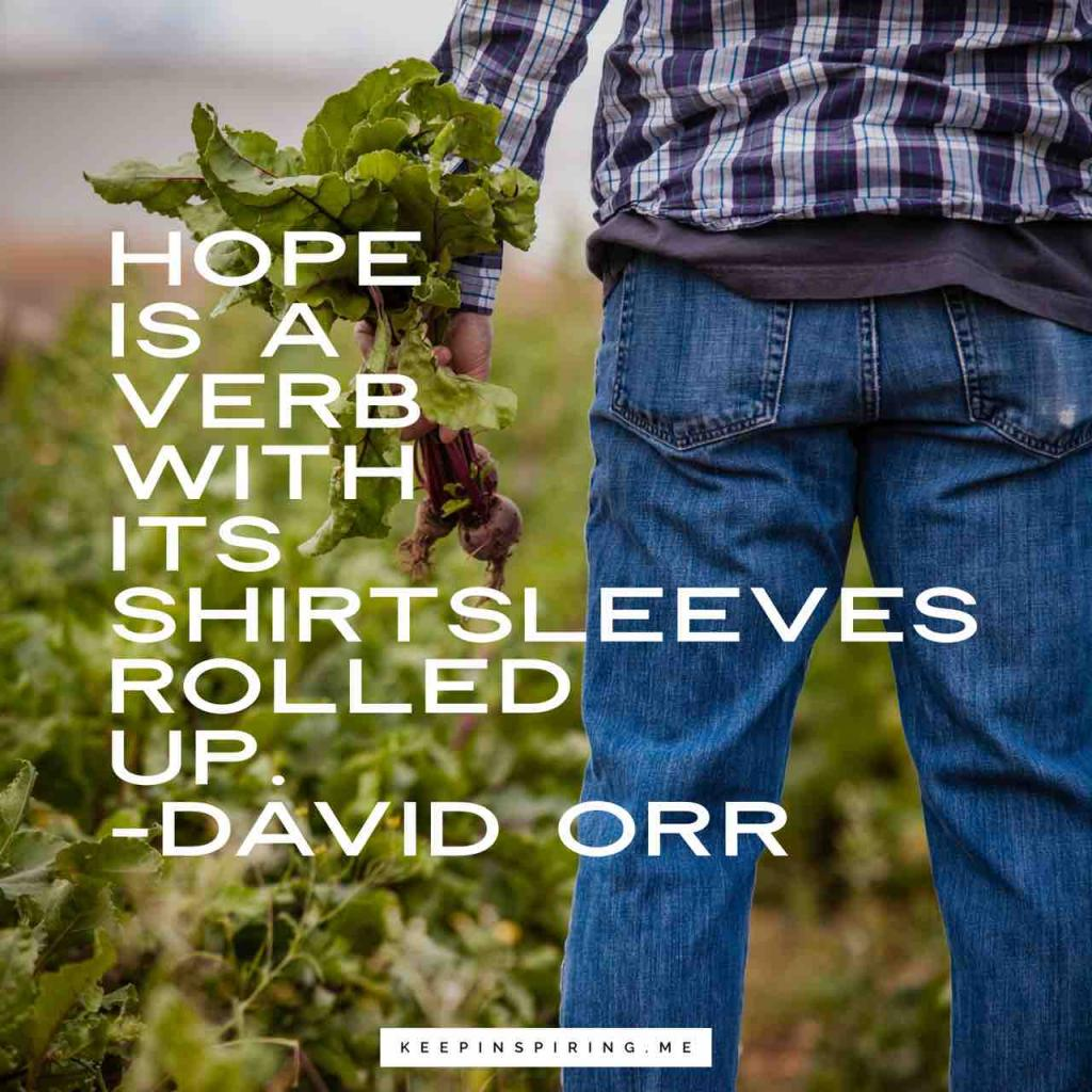 """David Orr hope quote """"Hope is a verb with its shirtsleeves rolled up"""""""