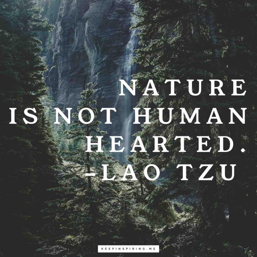 "Laozi quote ""Nature is not human hearted"""