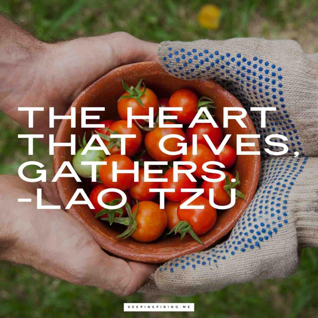 "Laozi quote ""The heart that gives, gathers"""