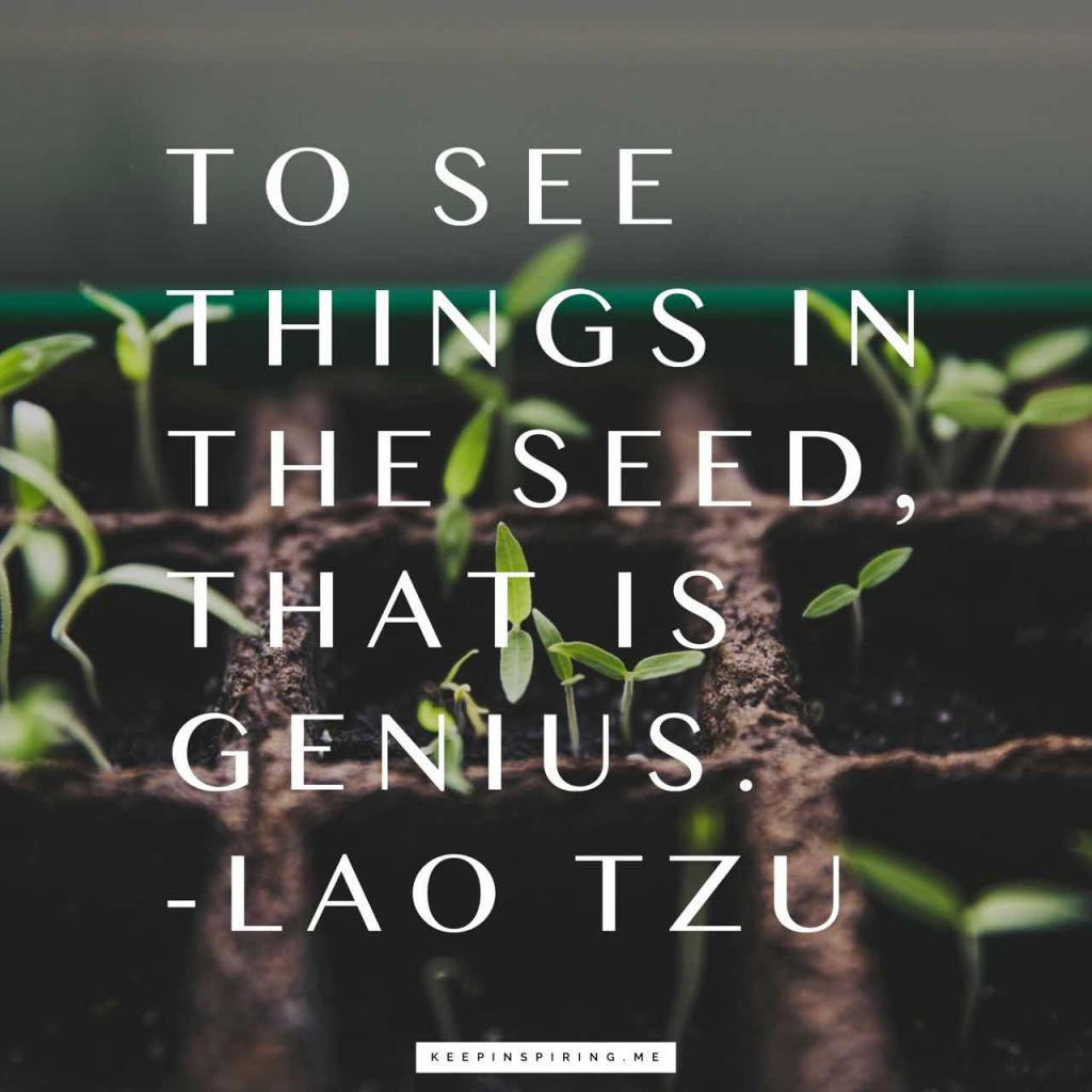 "Lao Tzu quote ""To see things in the seed, that is genius"""