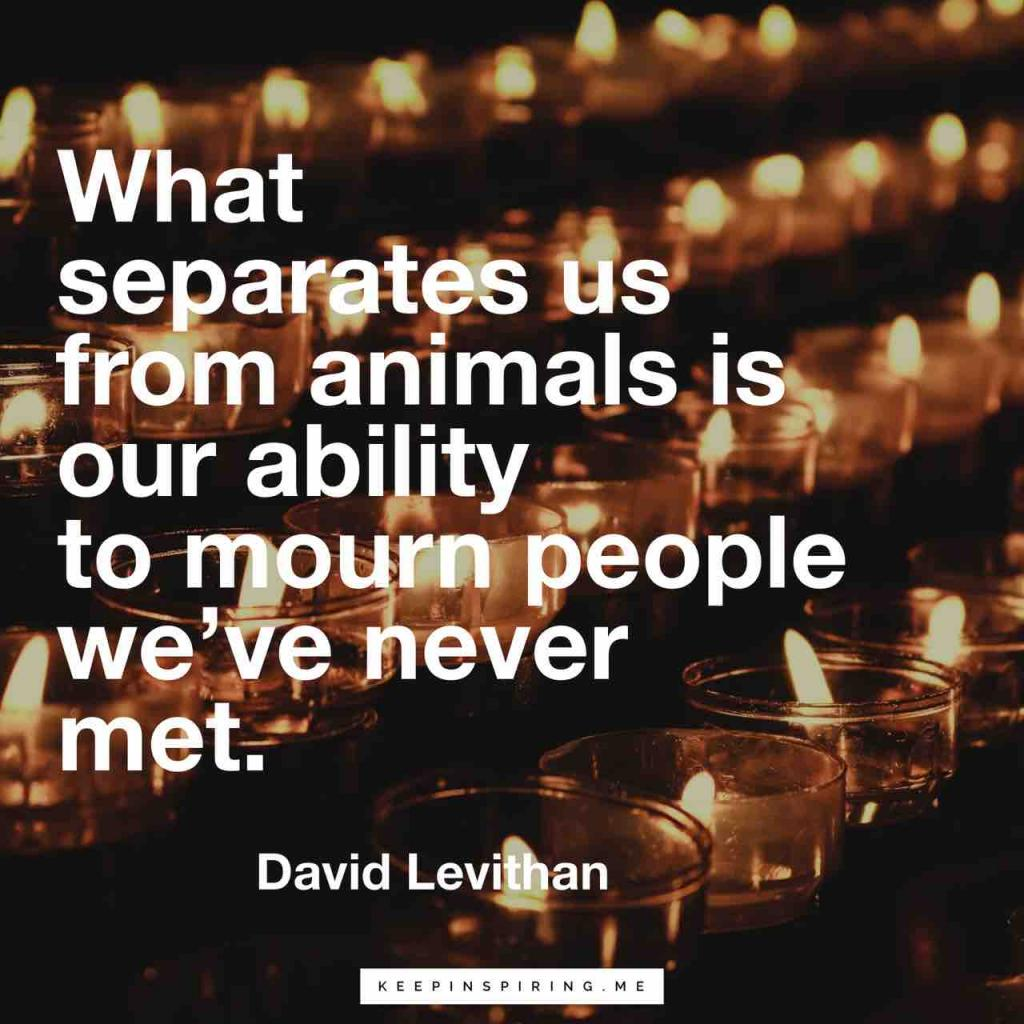"David Levithan quote ""What separates us from the animals is our ability to mourn people we've never met"""