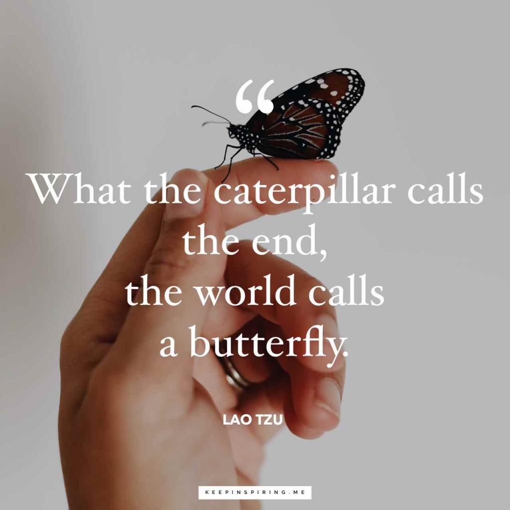 """What the caterpillar calls the end, the rest of the world calls a butterfly"""