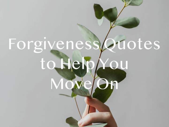 Forgiveness Quotes to Hel pYou Move On