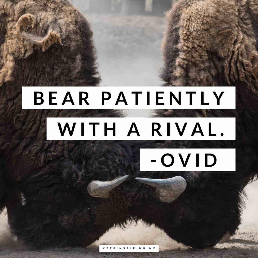 "Ovid patience quote ""Bear patiently with a rival"""