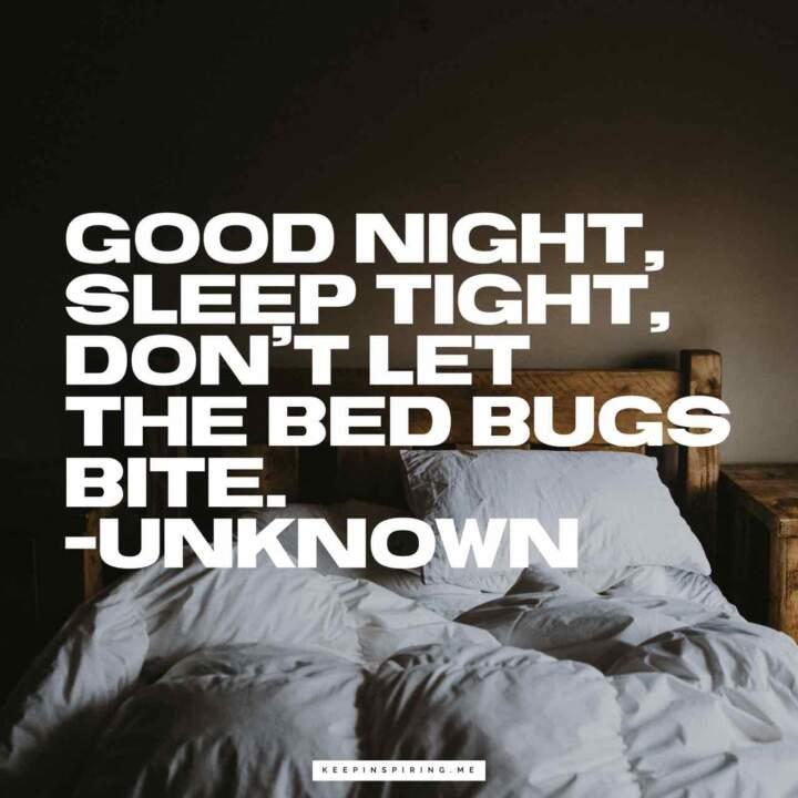 Short good night quotes