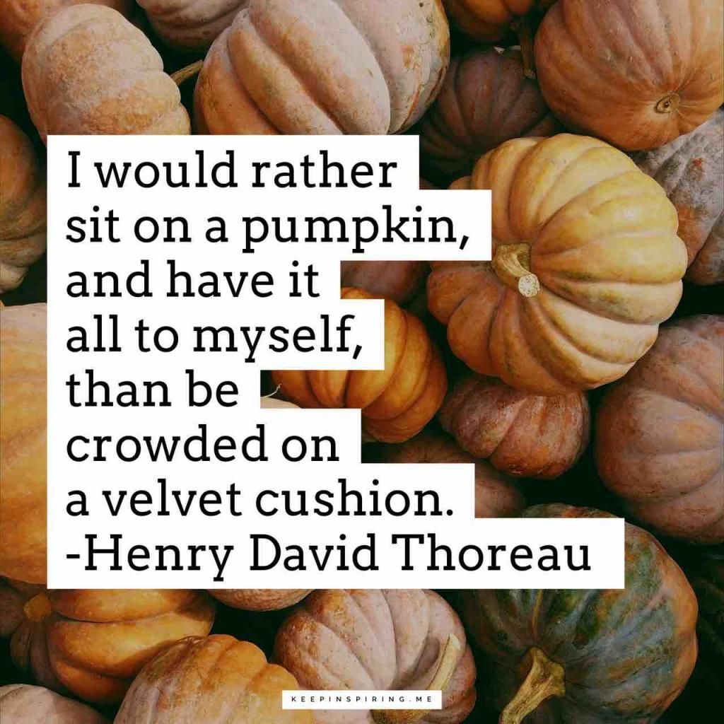 """""""I would rather sit on a pumpkin, and have it all to myself, than be crowded on a velvet cushion"""""""