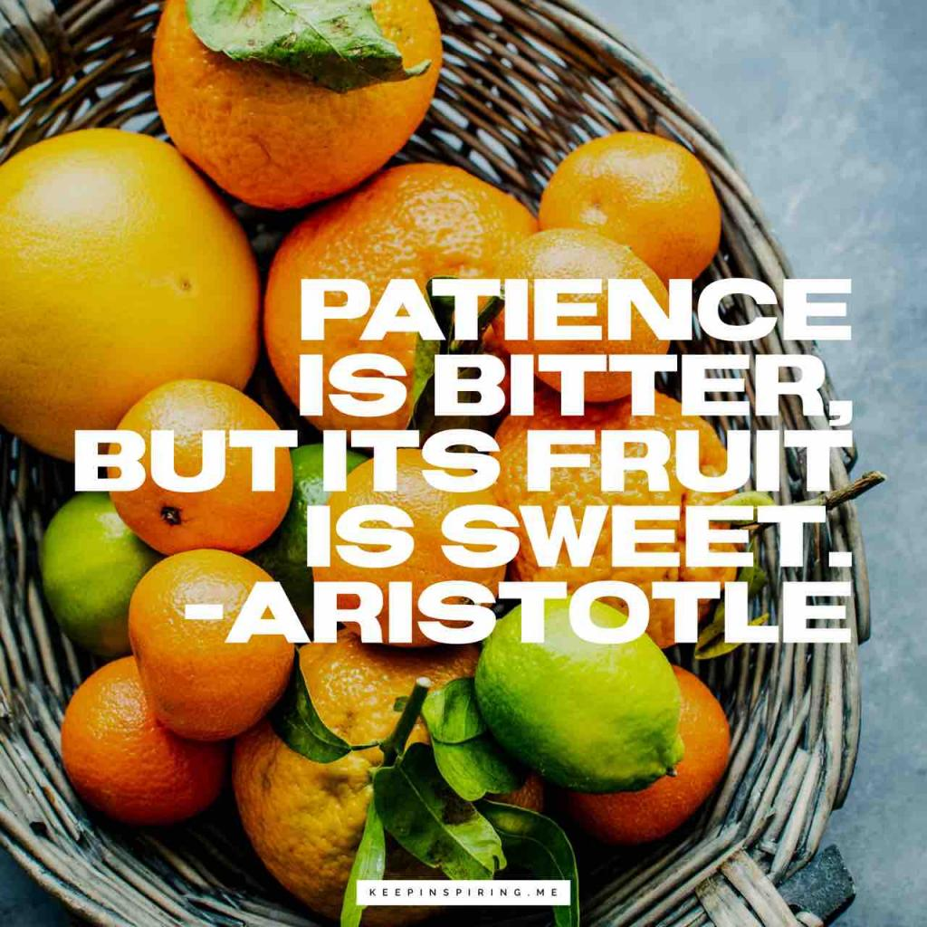 """Patience is bitter, but its fruit is sweet"""