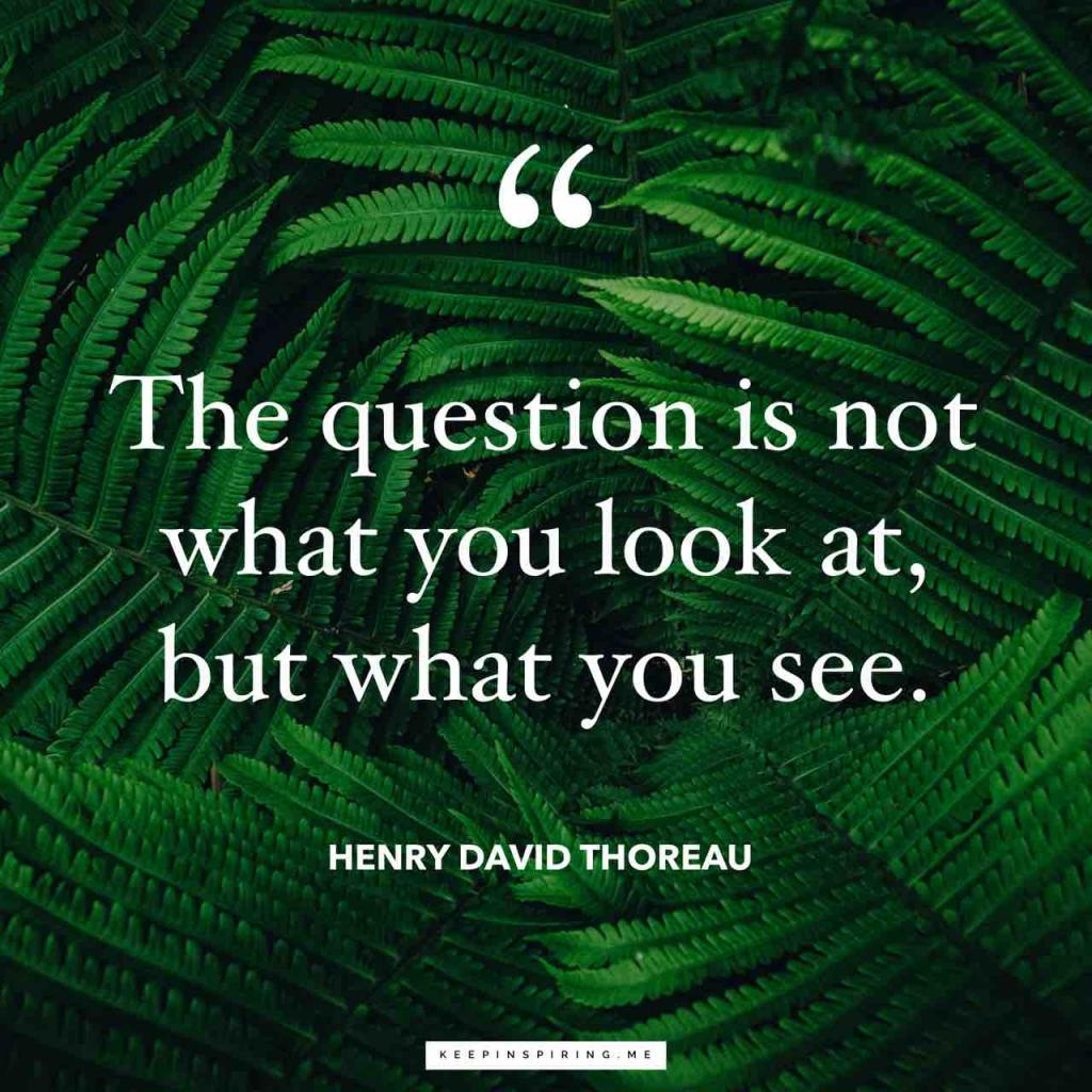 """Henry David Thoreau quote """"The question is not what you look at, but what you see"""""""