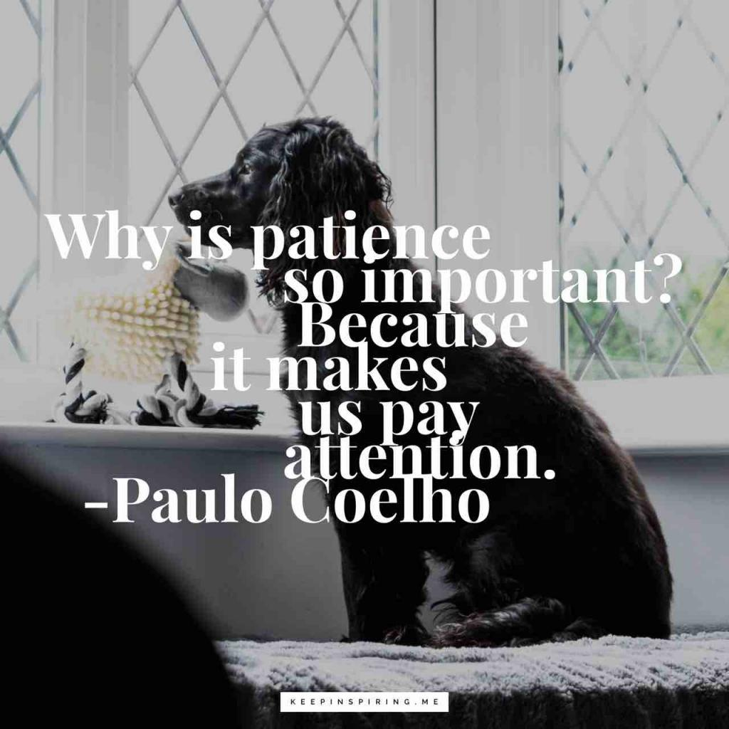 "Paolo Coelho quote ""Why is patience so important? Because it makes us pay attention"""