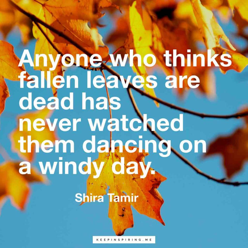"Shira Tamir fall quote ""Anyone who thinks fallen leaves are dead has never watched them dancing on a windy day"""