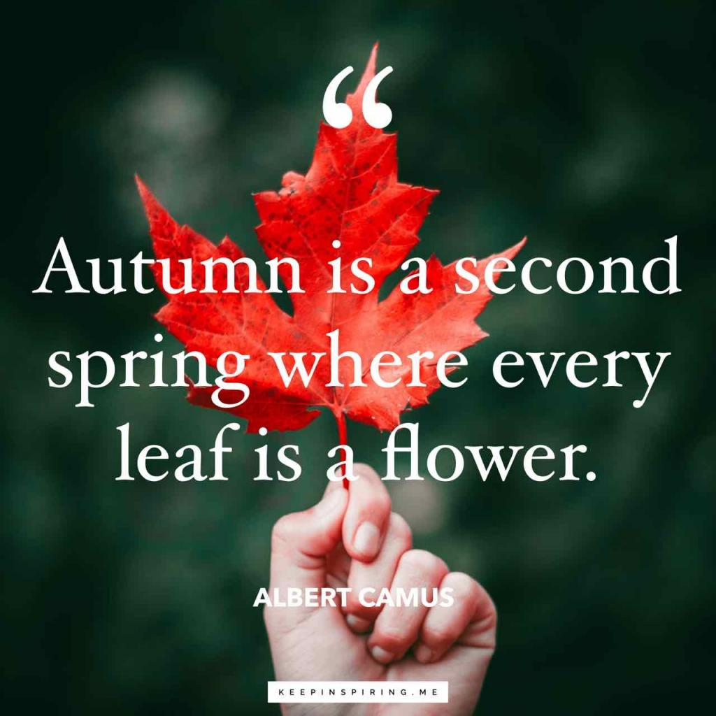 "Albert Camus fall quote ""Autumn is a second spring when every leaf is a flower"""