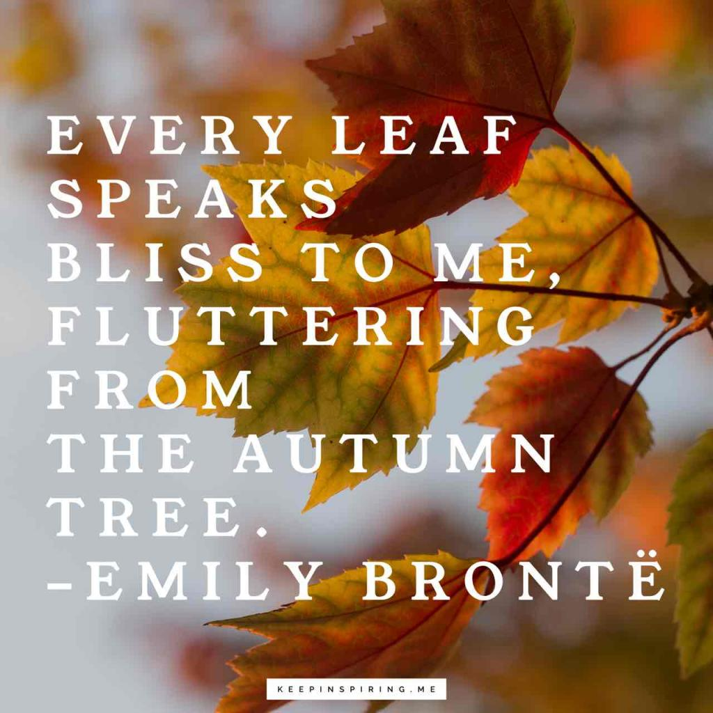 "Emily Brontë quote ""Every leaf speaks bliss to me, fluttering from the autumn tree"""