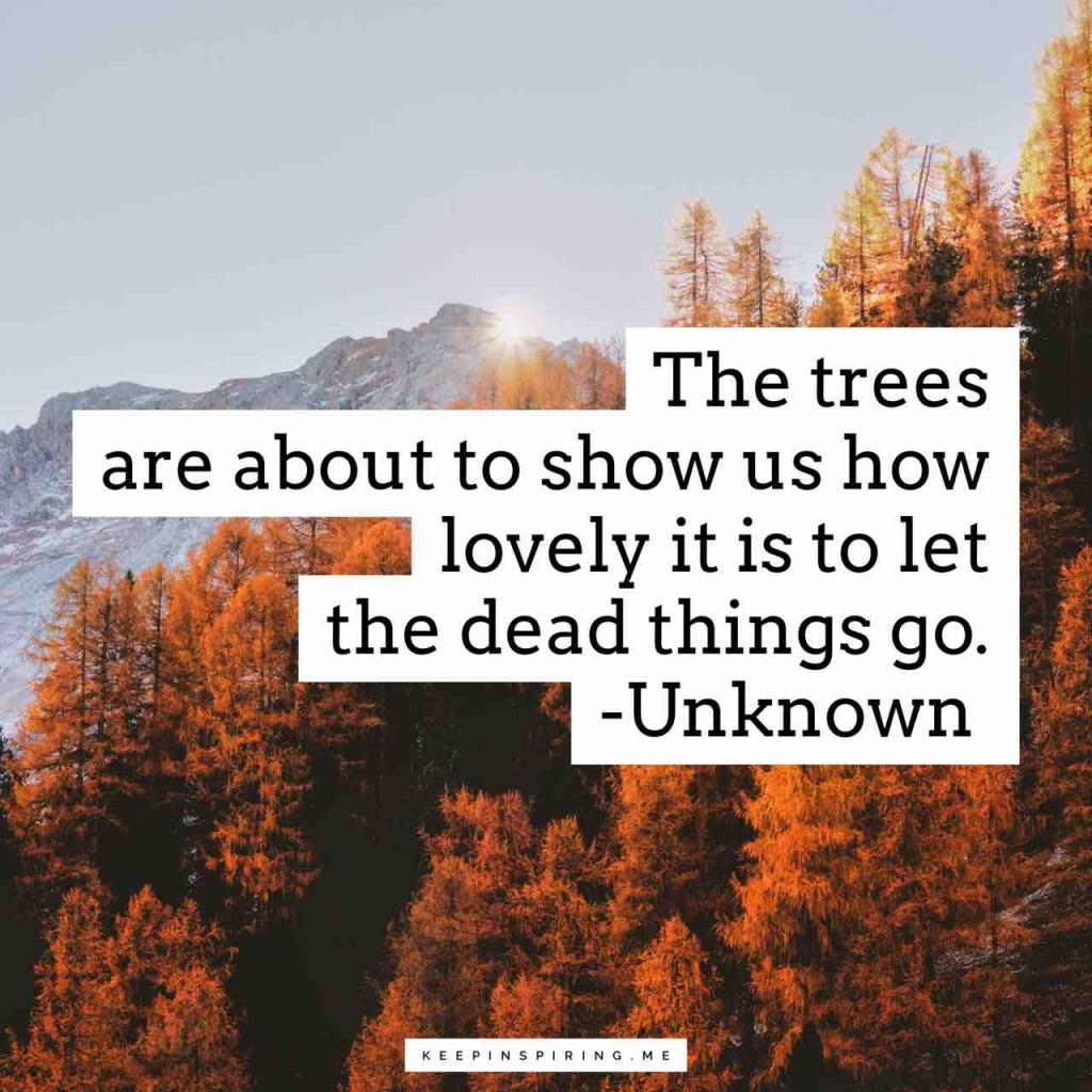 """The trees are about to show us how lovely it is to let the dead things go"""
