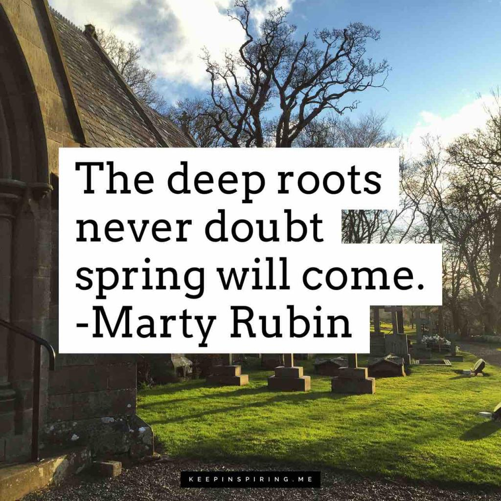 "Marty Rubin quote ""The deep roots never doubt spring will come"""